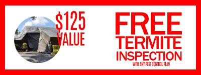 Free termite inspection San Diego